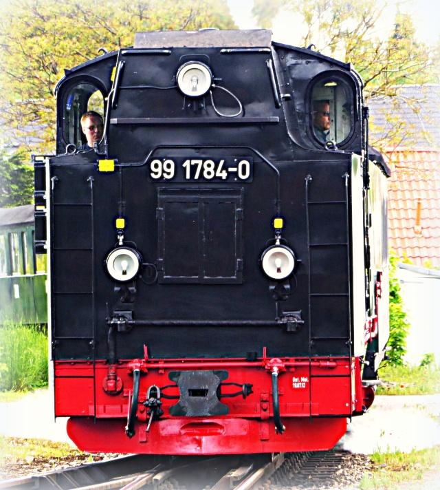 P1000235_b